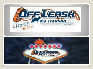 Dog Trainer Las Vegas | Dog Training Las Vegas NV | Dog Trainer Las Vegas | Off Leash K9