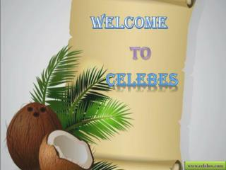 Celebes – Organic RDB Refined Coconut Oil Seller
