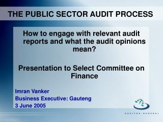 THE PUBLIC SECTOR AUDIT PROCESS
