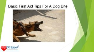 Basic First Aid Tips For A Dog Bite