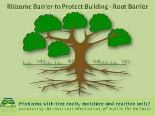Rhizome Barrier to Protect Building - Root Barrier