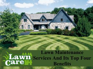 Lawn maintenance services and its top four benefits