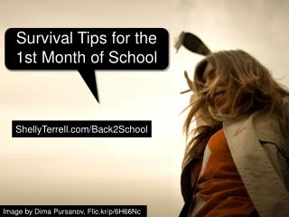 Back to School Survival Tips