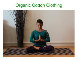 Why should you opt for Organic Clothing