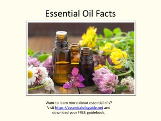 Essential Oil Facts