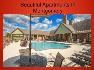 Are you Seeking For Fully Furnished Apartments In Montgomery?
