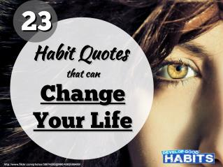 23 Habit Quotes That Will Change Your Life