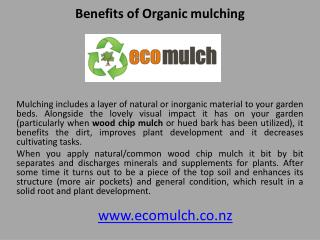 Benefits of Organic mulching