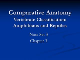 Comparative Anatomy Vertebrate Classification: Amphibians and Reptiles