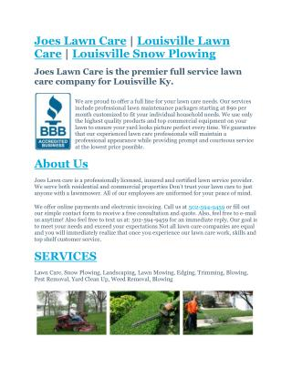 Ppt Unmatched Professionalism In South Tampa Lawn Care