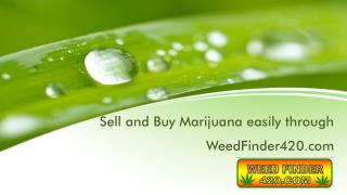 Sell and Buy Marijuana easily through WeedFinder420.com