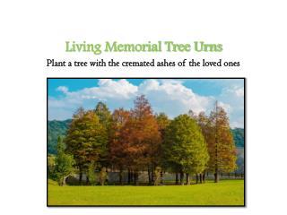 Living Memorial Tree Urns