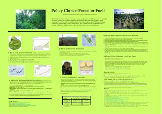 Policy Choice:	Forest or Fuel?