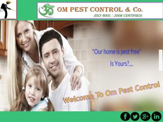 Hire The Right Pest Control Company in Odisha