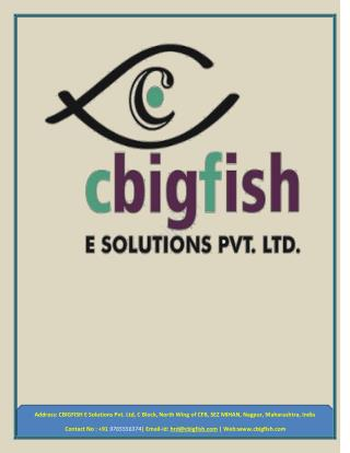 Cbigfish E-Solutions - Software Development Company, Mobile App & Web Development