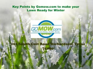 4 Key Points for Lawn Mowing during Winter Season
