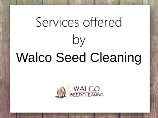 Services Offered By Walco Seed Cleaning