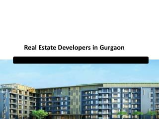 Real Estate Developers in Gurgaon