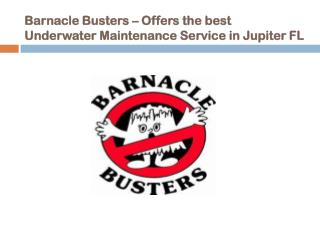 Barnacle Busters – Offers the best Underwater Maintenance Services in West Palm Beach FL