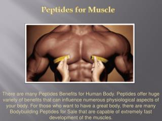 Bodybuilding Peptides for Sale