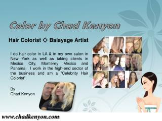 Los Angeles Hair Stylist