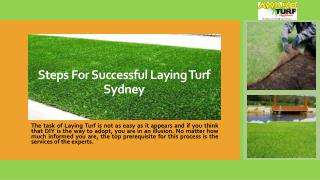 Steps for Successful Laying Turf Sydney
