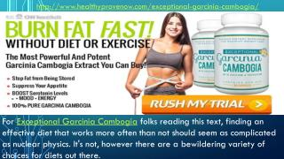 http://www.healthyprovenow.com/exceptional-garcinia-cambogia/