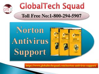 Norton Antivirus Support in USA | Toll Free 1-800-294-5907