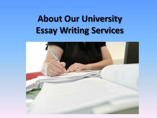 About Our University Essay Writing Services