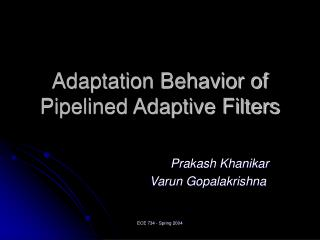 Adaptation Behavior of Pipelined Adaptive Filters