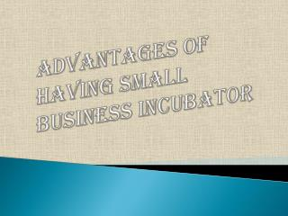 Benefits of Having Small Business Incubator