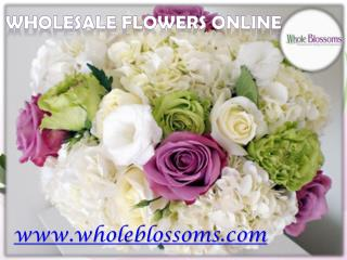 Wholesale Flowers Online  - www.wholeblossoms.com
