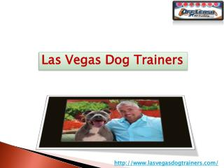 Dog Training Services in Las Vegas Nevada USA