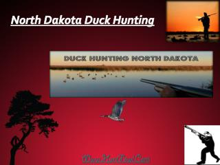 North Dakota Duck Hunting