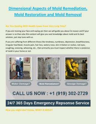 Dimensional Aspects of Mold Remediation, Mold Restoration and Mold Removal