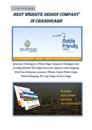 Best Website Design Company in Chandigarh