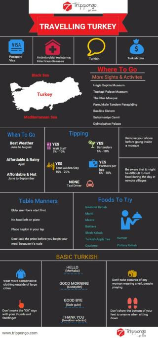 Turkey Travelling Infographic - Trippongo