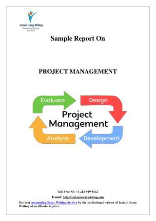 it management essay