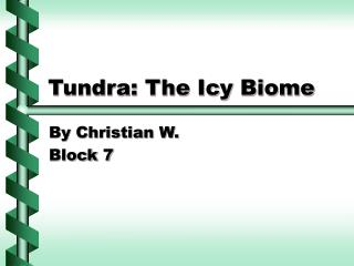Tundra: The Icy Biome