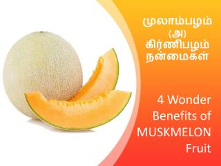 4 Wonder Benefits of Muskmelon Fruit - MyRightBuy