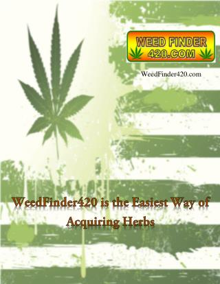 Weedfinder420.com Is Showcasing the Best of Stores Selling Weeds