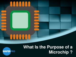What Is the Purpose of a Microchip ?