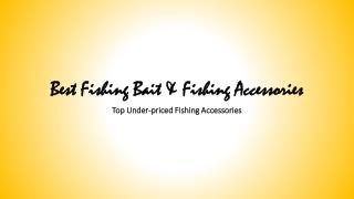 Best Fishing Bait and Fishing Accessories