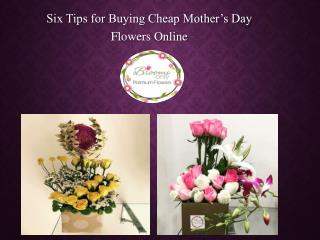 Best Mother's Day Flower Delivery in Pune – Blooms Only