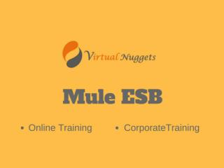 Live  Mule ESB Online Training | Tutorials | Demo