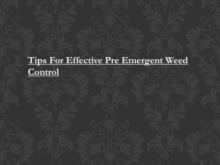 Pre Emergent Weed Control Oklahoma