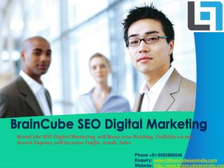 Braincube SEO Company in India
