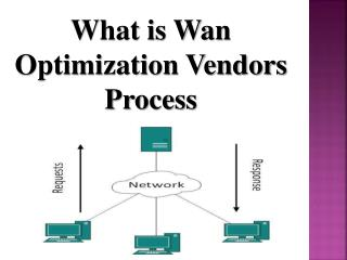 What is Wan Optimization Vendors Process