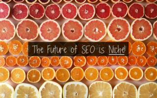 The Future of Search is Niche