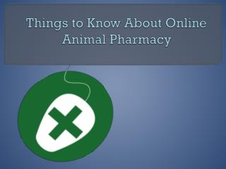 Things to Know About Online Animal Pharmacy